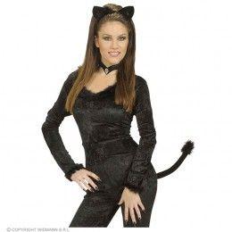 kattenset