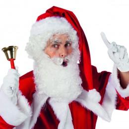 Kerstbaard met pruik
