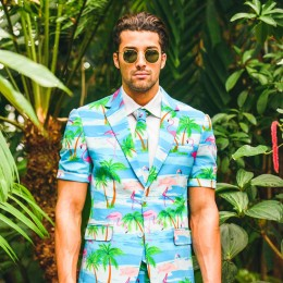 OppoSuit Flaminguy summer