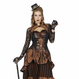 Steampunk jurk/ Dickens jurk