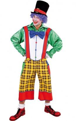 Clownsbroek geruit